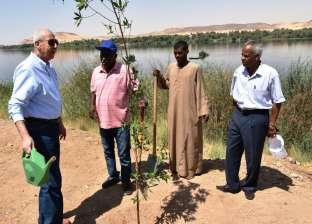 محافظ أسوان: تطوير الحدائق العامة وزيادة المسطحات الخضراء بالميادين