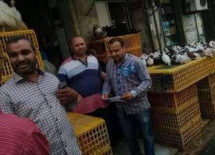 """""""الرصد البيئي"""" تتصدى لإنتشار مرض إنفلونزا الطيور بحي وسط بالإسكندرية"""