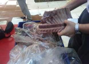 ضبط 9 أطنان لحوم وأسماك ودواجن فاسدة في 20 محافظة