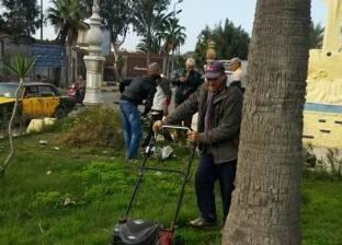 حي شرق بالإسكندرية يرفع مخالفات تقليم الأشجار بنطاق الحي