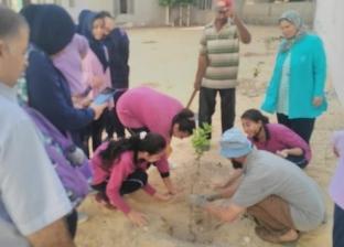 زراعة 46 شجرة مثمرة بمدارس وسط الإسكندرية