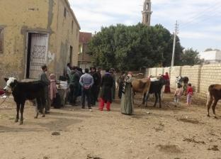 جامعة المنيا تطلق قافلة متكاملة لقرية بملوي