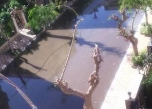 في جولات مفاجئة.. محافظ الإسكندرية لمتابعة تصريف مياه الأمطار بالشوارع