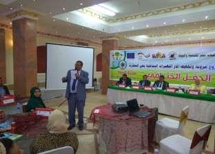 تطوير ميدان المطرية وشجرة مريم بسواعد شباب المنطقة