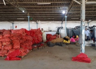 ضبط 100 طن بطاطس بإحدى ثلاجات تخزين الحاصلات الزراعية في بنها