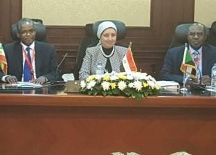 مصر وإثيوبيا والسودان يستكملون مباحثات تأسيس صندوق تمويل الاستثمارات