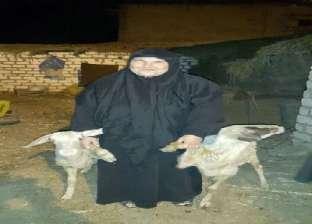 «مستورة».. قرض الستر لستات مصر
