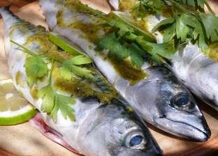 """""""بيحارب السرطان""""..بيطري يوضح فوائد سمك الماكريل وأنواعه وكيفية اختياره"""