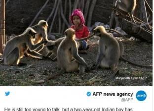 """على طريقة """"طرزان"""" و""""ماوكلي""""..الطفل """"الأسطورة"""" لا يتحدث ويلعب مع القردة"""