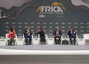 أحمد هيكل: مصر قامت بإصلاحات اقتصادية سليمة لاستعادة مناخ الاستثمار