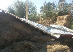 حملة مكبرة لإزالة التعديات على الأراضى الزراعية بقرية الشيخ ضرغام في دمياط