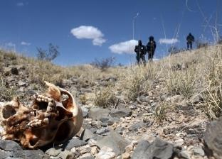 """في المكسيك """"البقاء للأقوى"""".. رؤوس مقطوعة ومقابر جماعية في الشوارع"""