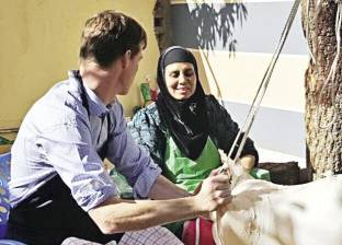 السفير البريطانى يأكل المحشى والــ«أرانشينى» الإيطالى