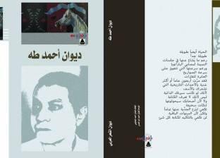 """""""العامة للكتاب"""" تصدر """"الديوان الكامل"""" لـ أحمد طه"""