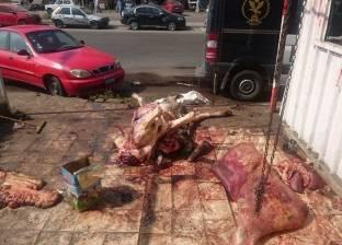 محافظ القاهرة يطالب بتحرير محاضر مخالفة لذبح الأضاحي بالشوارع