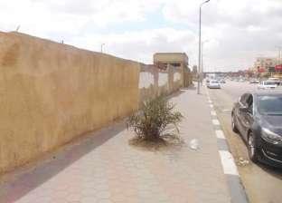 بدء ترميم وطلاء حوائط المقابر المطلة على صلاح سالم