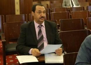 نائب: قرارات المحافظين بشأن مخالفي الطلاء الموحد «اجتهادات»