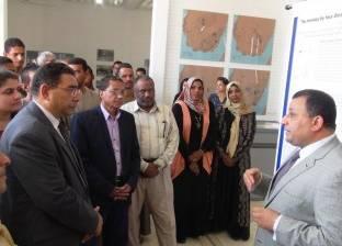 إفتتاح معرض مؤقت للآثار العربية في جزيرة الإلفنتين بأسوان