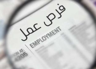 وزارة الري تعلن عن 46 وظيفة شاغرة.. الشروط والتفاصيل