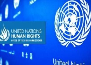 بينها مصر.. تعرف على تبرعات الدول لمفوضية الأمم المتحدة لحقوق الإنسان
