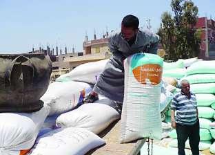 166 ألف طن رصيد القمح في مخازن القطاع العام بميناء دمياط