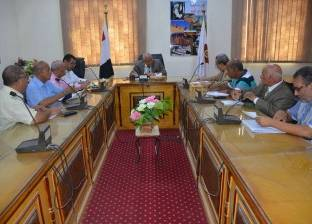 محافظ الوادي الجديد يناقش خطة المحافظة الاستثمارية للعام المالي 2019