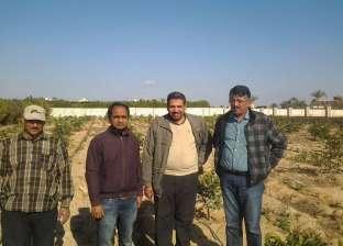 """""""الزراعة"""" تبدأ تنفيذ مشروع لتقدير الاحتياجات المائية للمحاصيل الرئيسية"""