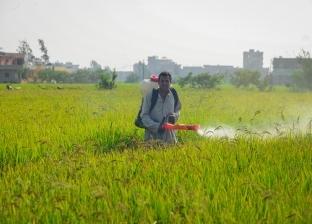 """مصادر: بدء تدريب المزارعين على تطبيق """"بشاير"""" بعد أيام العيد"""