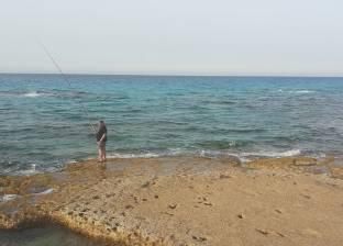 """""""اتحاد صيد الأسماك"""": سنطالب بتنظيم """"بطولة العالم"""" للصيد في الغردقة"""