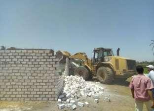 إزالة 6 حالات تعد على الأراضي الزراعية بقرية دمشير في المنيا