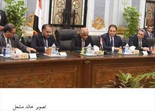 """""""الشيوخ الفرنسي"""" لـ""""عبدالعال"""": نعمل على توثيق التعاون في الاقتصاد والسياحة والسلاح"""