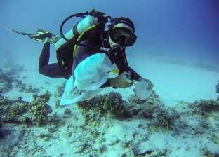 بالصور| حملة لجمع المخلفات بقاع البحر في شواطئ مدينة دهب