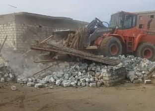 إزالة 19 حالة تعدي على الأراضي الزراعية ببرج العرب في الإسكندرية