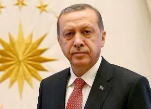 """أردوغان: دول أوروبا كشفت """"هجومها على تركيا"""" في الفترة الأخيرة"""