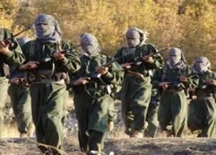 المقاتلون الأكراد يعلنون إلقاء القبض على إرهابي فرنسي بارز شمالي سوري