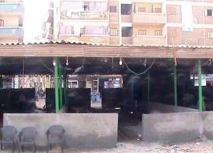 محافظ سوهاج: إقامة سوق حضارية لبائعي الأسماك في مدينة جرجا