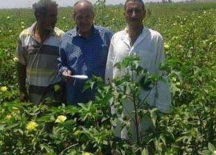 وزير الزراعة: الصناعة المصرية مطالبة بتطوير المحالج لغزل الأقطان