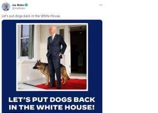 """بايدين يعيد """"جيرمن شيبرد"""" إلى البيت الأبيض: من أذكى 10 كلاب في العالم"""