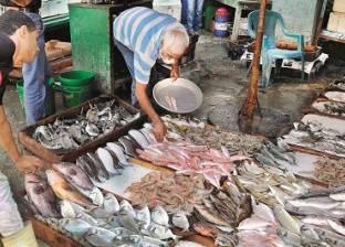 أسعار الأسماك اليوم الثلاثاء 19–2-2019 في مصر