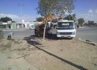 بالصور| رئيس مدينة رأس سدر يقود حمله نظافة بمنطقة السوق التجارية