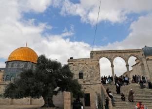 «دبلوماسية المصالح».. تركيا تخطط لـ«الوصاية» على القدس الشرقية.. وموقف إسرائيل غامض