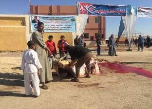 ذبح عجل أمام وزير الشباب والرياضة أثناء تفقده نادي نقادة بقنا