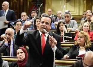"""""""محلية النواب"""" توافق على المادتين 8 و9 بـ""""هيئة تنمية جنوب الصعيد"""""""