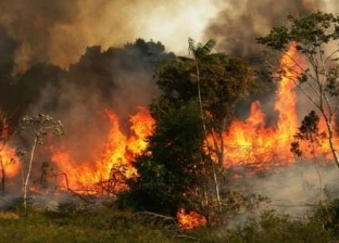 """ماكرون قال إن بيتنا يحترق ورنالدو أطلق إنذارا.. مشاهير نشروا صورا خاطئة عن """"الأمازون"""""""