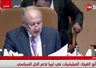 أبوالغيط: ملف التدخلات الإيرانية يشغل العرب جميعا