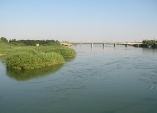 """""""روسيا اليوم"""": العبارة العراقية الغارقة انقلبت في غابات الموصل"""