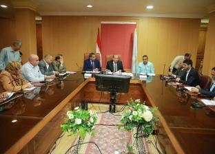 """محافظ كفر الشيخ يتابع تنفيذ المشروعات القومية مع لجنة """"الوزراء"""""""