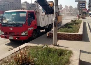 محافظ الغربية يوجه بشن حملات نظافة ورفع أكوام القمامة في المحلة
