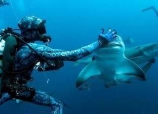 بالصور  غواص محترف ينوّم أسماك القرش مغناطيسيا