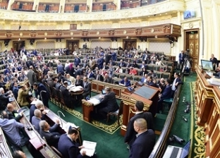 """وكيل """"دفاع النواب"""": موافقة البرلمان على مد حالة الطوارئ واجب وطني"""